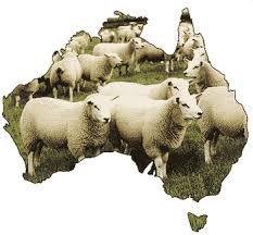 Cooee3 Aust Day
